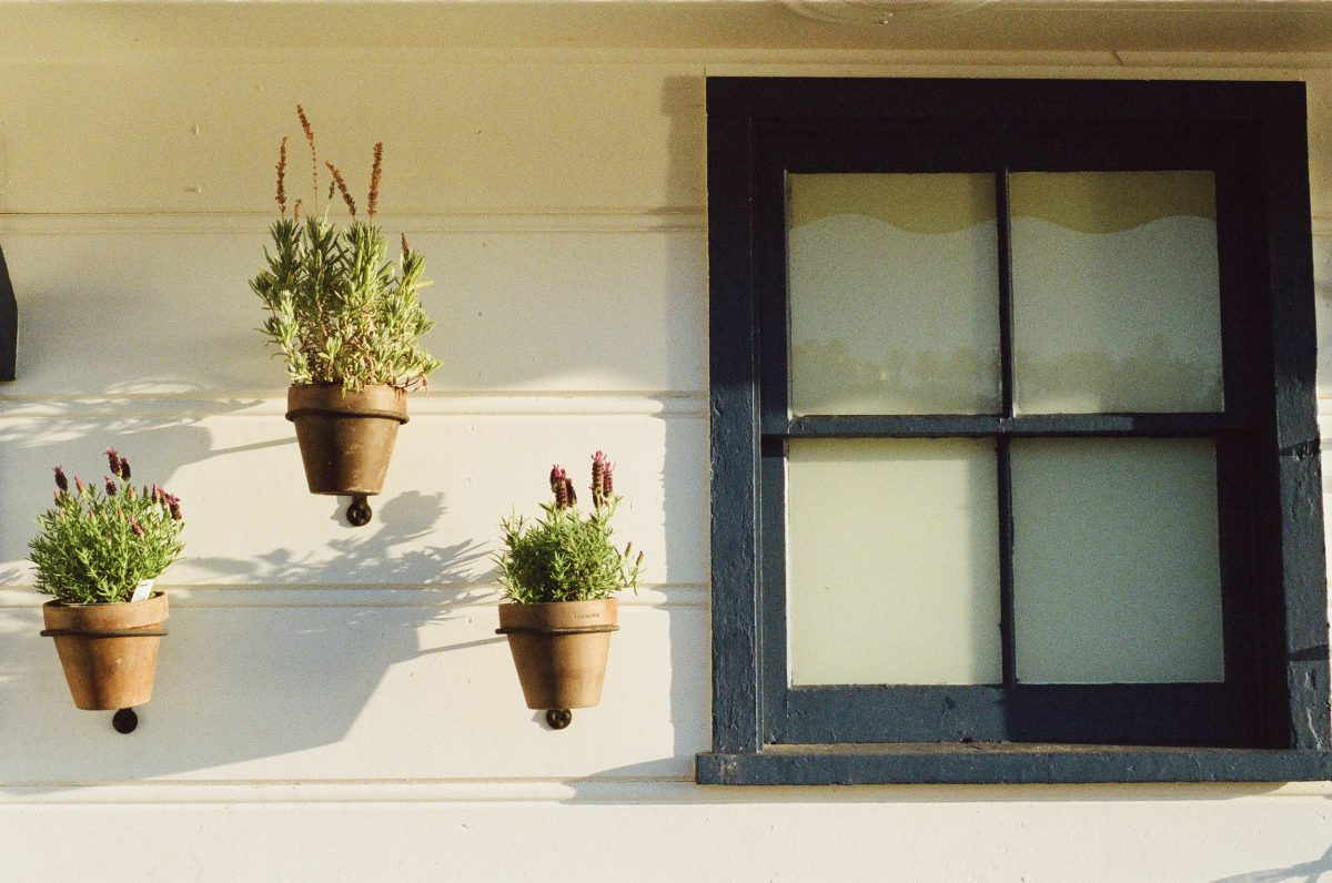 How to Flawlessly Decorate Your Windows During Bank Holidays?